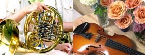 中古管楽器・弦楽器